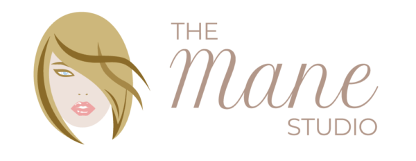 The Mane Studio Palm Dessert Logo